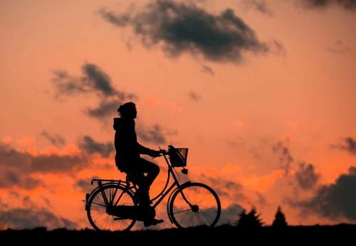 Covid-19 : questions d'entrevue  ET métier : vélo