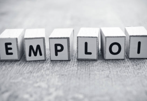 Offres d'emploi de la semaine du 15 février 2021